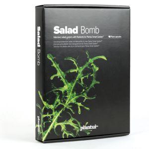 Plantui Salad Bomb