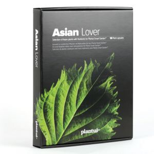 Plantui Asian Lover