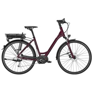 Raleigh Stoker B9 elektrische fiets